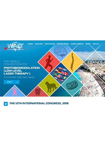 12th-walt-conference-2018