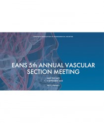 5th-annual-meeting-of-the-eans-section-of-vascular-neurosurgery