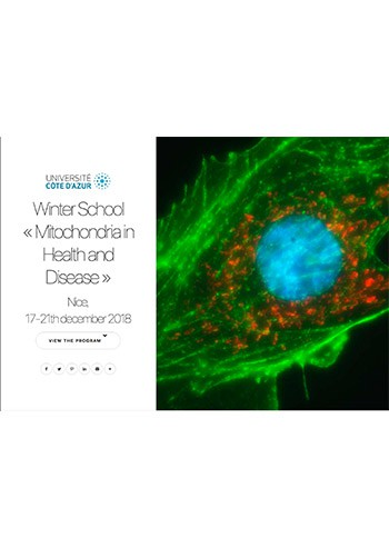 winter-school-mitochondria-in-health-and-disease