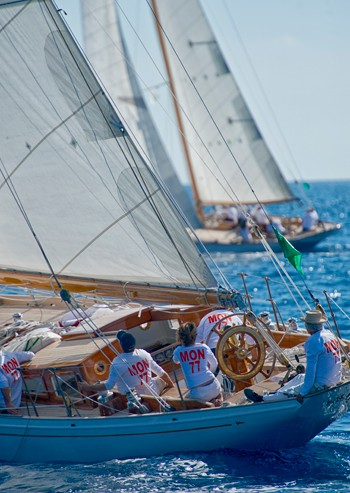 Regatta at sea